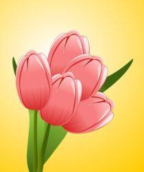 Logo der Blumenstube Brandes